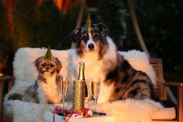 Jak zrealizować postanowienia noworoczne?